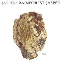 JASPER: RAINFOREST JASPER